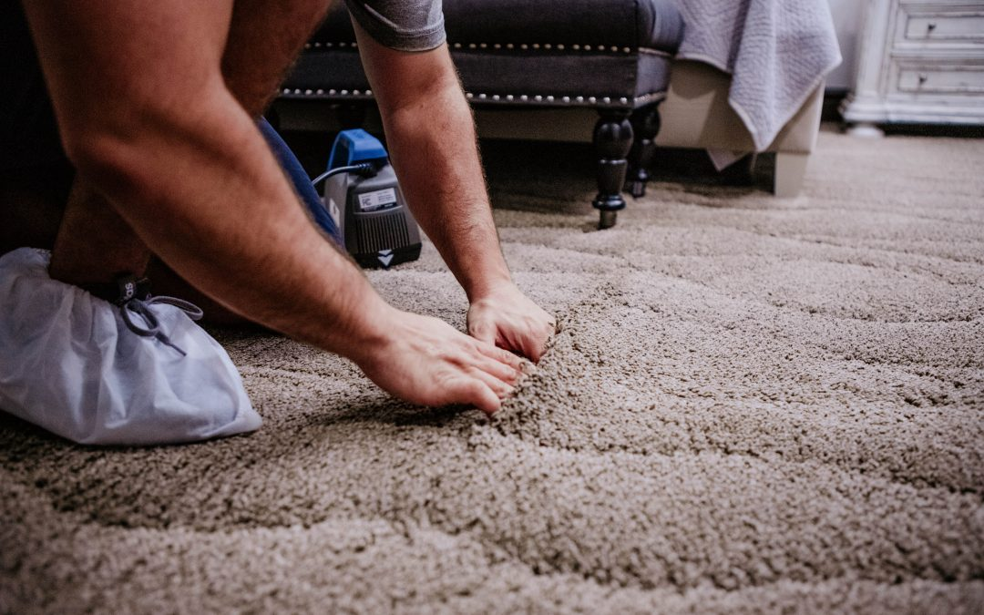 Damaged Carpet? Repair it or Replace it?