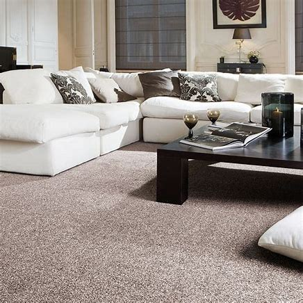 Did You Know Carpet is the Biggest Air Filtration in Your Home?