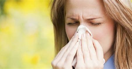 Get an Air Duct Cleaning & Say Goodbye to Fall Allergies!