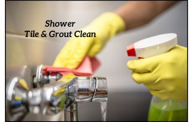 Keeping Tile & Grout Clean in Your Shower!