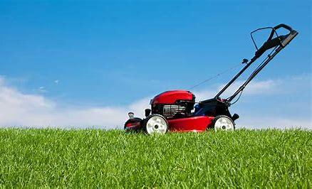 What Time of the Year Should I Fertilize my Yard?