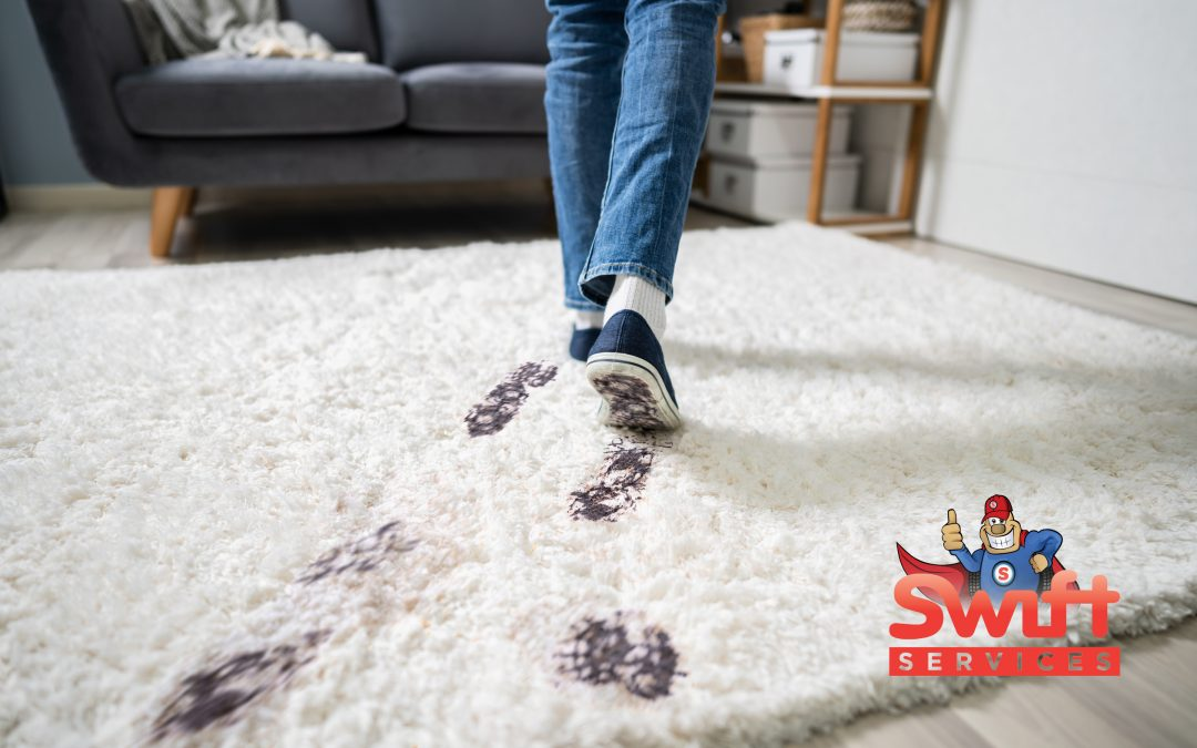 Carpet Cleaning Do's & Don'ts